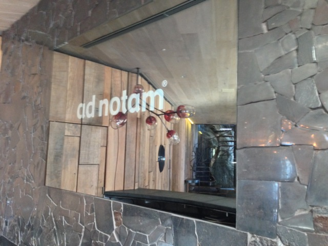 ad notam logo on Ellerman House Mirror Television